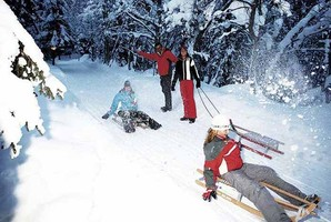 Schlittenverleih, Rodelbahn, Winterurlaub Zell