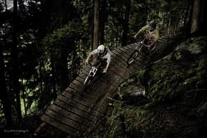Downhillstrecke, Bike Verleih, Rosenalmbahn